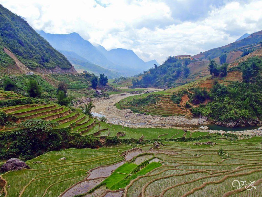 rice terraces Sapa