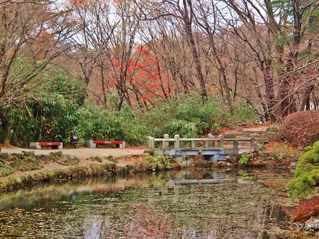 pond gyeongju travel blog