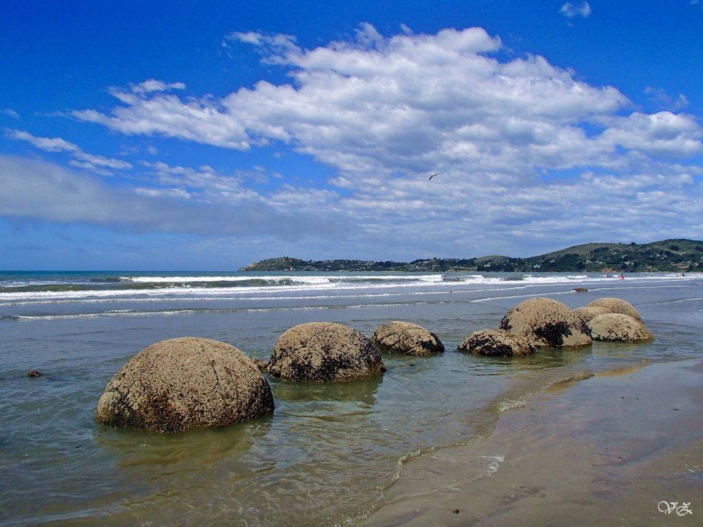 new zealand travel blog