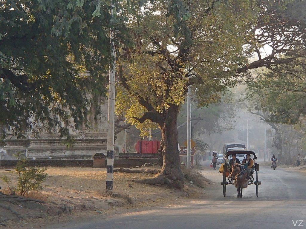 Local Life Bagan