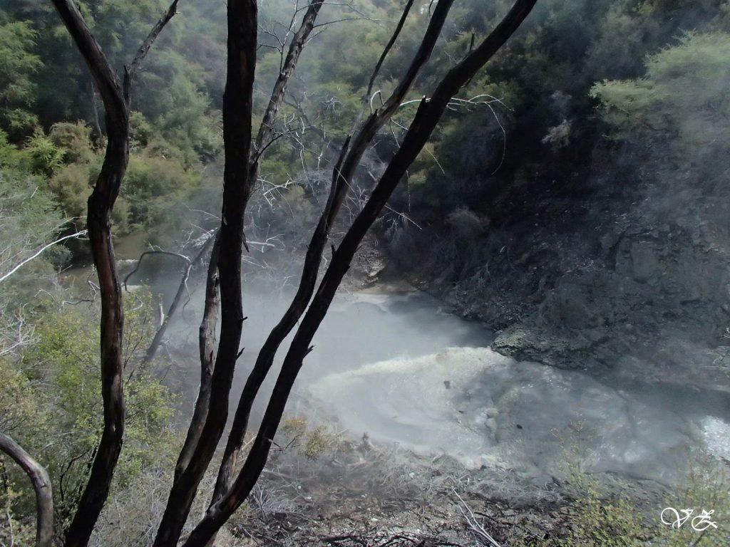 waitapu geothermal