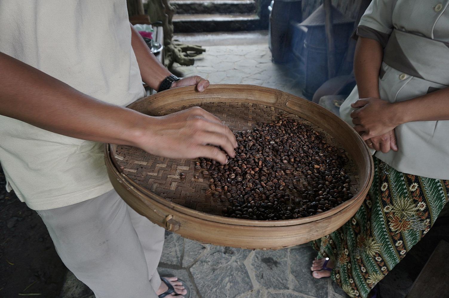 Munduk Coffee Plantation Tour