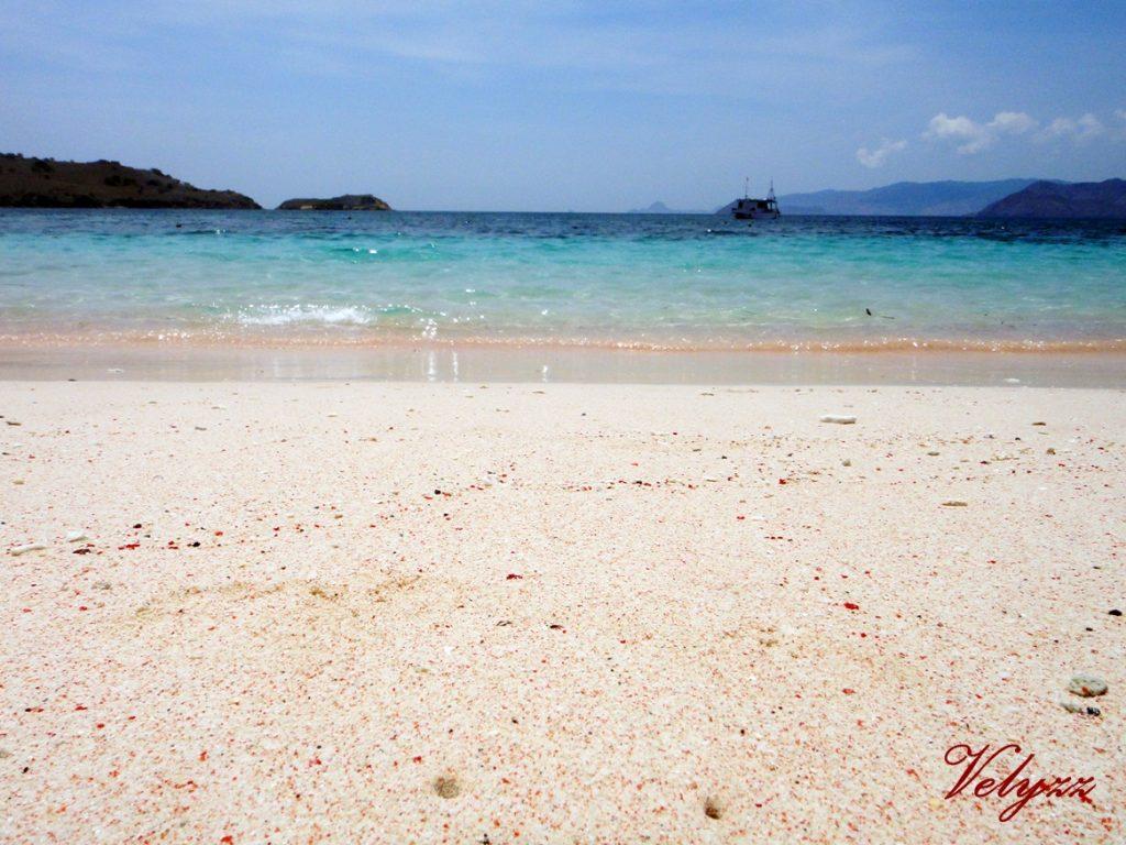 Pink Beach Komodo Islands Indonesia